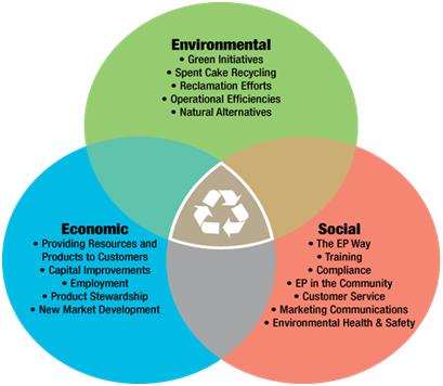 Environmental economic