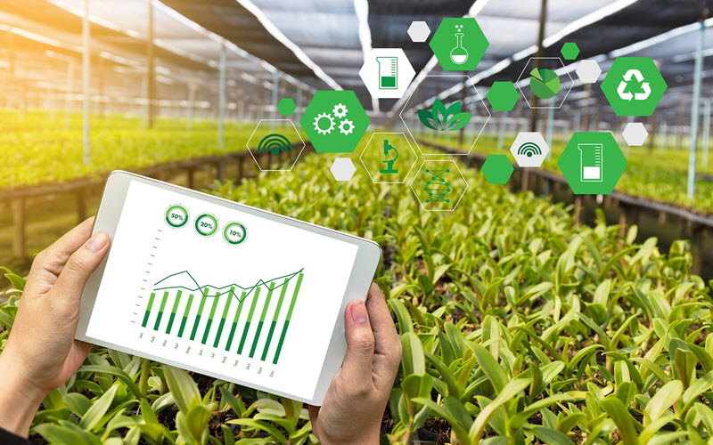 AI for Agricultural Supply Chain - SIPMM