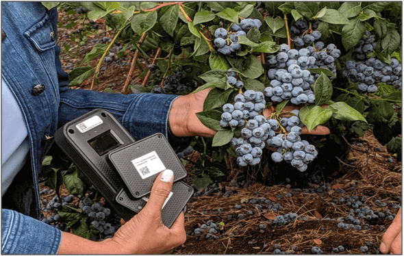 iot-solutions in farming