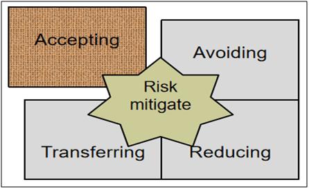 Risk Mitigate